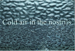 Helen MacAlister, Cold air in the nostrils, 2011, sand-blasted glass, edition of 3, 10.5 x 15 cm, £600